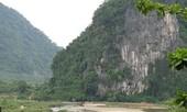 Lâm tặc đốn hạ hai cây sưa trăm tỷ ở Trường Sơn