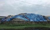 Bộ trưởng TN&MT: Sẽ đình chỉ dự án xử lý rác thải có sai phạm