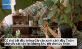 Cô gái trồng 670 cây trong nhà để thanh lọc không khí