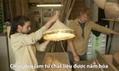 Tự tay trồng nấm làm đồ nội thất gia đình