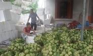 Ngày hội 'Mỗi làng một sản phẩm' ở Lục Nam
