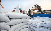 Việt Nam trúng thầu bán 175.000 tấn gạo cho Philippines