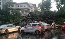 Hà Nội lên kịch bản di dời 900 nghìn dân nếu có bão mạnh