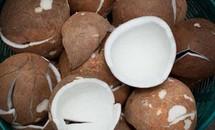 Bí quyết chống ung thư, ngừa vô sinh bằng dừa khô