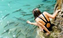 Massage bằng cá dưới thác nước 7 tầng ở Thái Lan