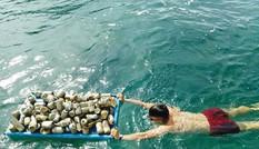 Thanh niên nhặt rác 'lịch sự nhất Sơn Trà'