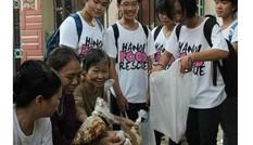 Những người trẻ liên kết xin đồ ăn cho người nghèo