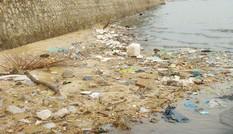 Hạ Long ô nhiễm vì rác