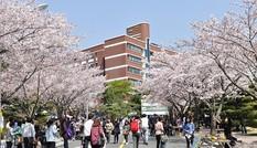 Học bổng đại học tại Hàn Quốc năm 2015