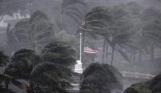 Tràn vào nước Mỹ, bão Irma suy yếu xuống cấp 1
