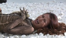 Thí sinh Next Top Model khóc ngất khi chụp ảnh với trăn 'khủng'