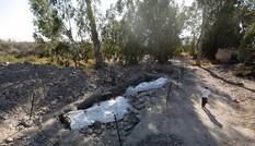 Nhà khoa học tiết lộ tàn tích làng chài quê hương của tông đồ Chúa Jesus