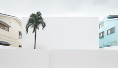Ngôi nhà trắng 'không tỳ vết' ở Nhật