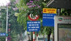 Biển báo giao thông 'thách thức' người đi đường Thủ đô