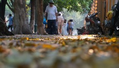 Chụp ảnh tạo dáng trên phố dưới cái nắng thiêu người