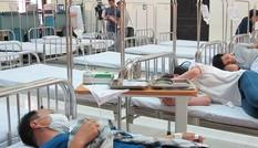 TPHCM: Số ca mắc sốt xuất huyết có dấu hiệu chững lại