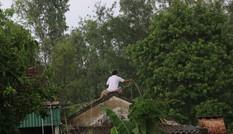 Tin mới nhất về cơn bão số 10 uy hiếp bờ biển miền Trung