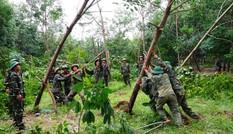 600 cán bộ, chiến sĩ giúp dân khắc phục hậu quả cơn bão số 10