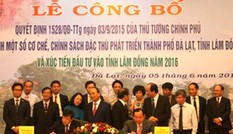 Hơn 9 ngàn hecta cây cà phê tại tỉnh Lâm Đồng tái canh từ nguồn vốn Agribank
