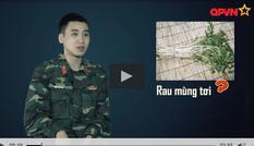 Sao nhập ngũ: Khắc Việt lội bùn hái rau cần