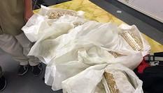 Nghi án năm người đi máy bay quấn 20kg vàng quanh chân