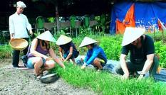 Khách Tây đóng tiền học làm nông dân ờ Sài Gòn