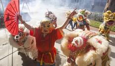 Người Việt khắp thế giới vui xuân sớm