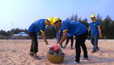 Hơn 1.500 ĐVTN Huế chung tay làm sạch môi trường biển