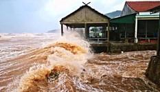 [ẢNH] Cảnh tượng tan hoang nơi cơn bão số 10 đi qua