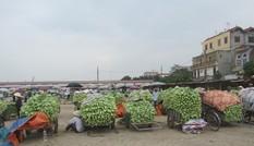 Hà Nội muốn xây chợ đầu mối 250 triệu USD kiểm soát thực phẩm