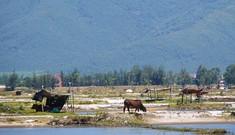 Từ tâm chấn Formosa -  Bài 2: Chát mặn diêm dân