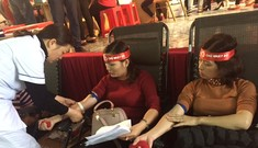 Chủ Nhật Đỏ tại Nghệ An tiếp nhận 1.239 đơn vị máu
