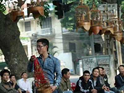 Quán cafe chim Hồ Thiền Quang