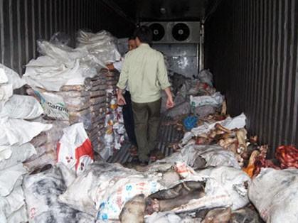 Hơn tám tấn thịt thối trong container đông lạnh
