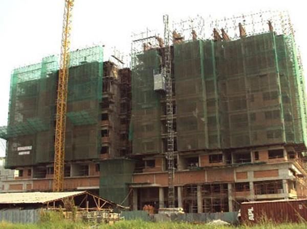 Mua đất được khuyến mại gạch xây nhà