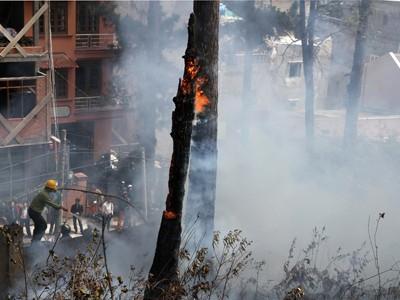 Cháy rừng thông gần khu dân cư