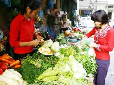 Đồng Tháp: Mùa lũ, giá rau màu tăng cao
