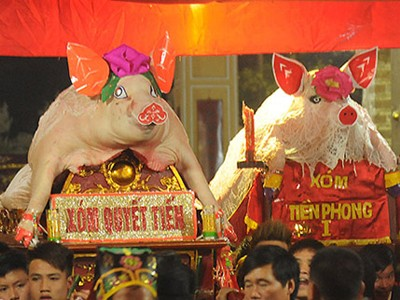 Ngôi làng coi lợn như vật báu