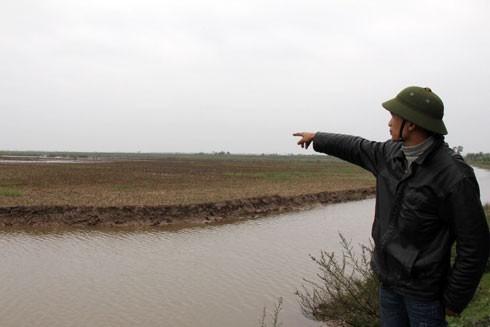Hải Phòng dừng thu hồi đất nuôi trồng thủy sản