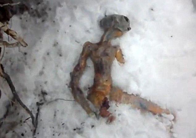 Phát hiện xác chết người ngoài hành tinh?