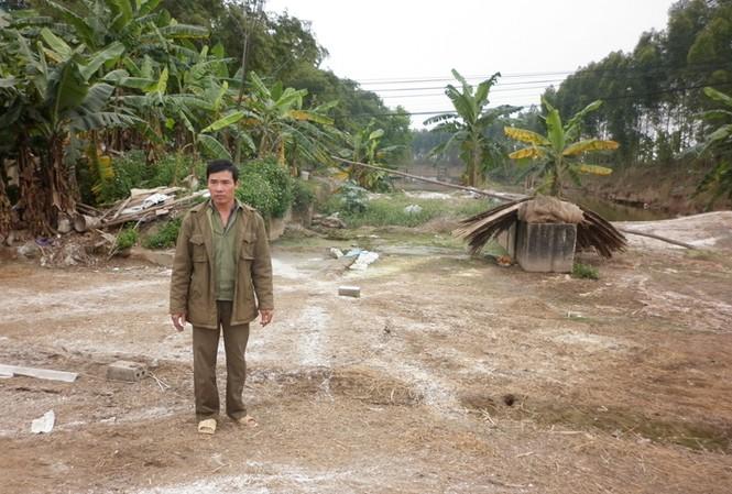 Ông Nguyễn Trọng Túc đứng bần thần bên lán vịt đã tháo dỡ sau khi tiêu hủy Ảnh: Phạm Anh