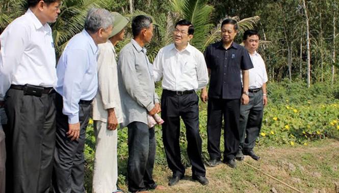"""Chủ tịch nước xem xét """"Cánh đồng lớn"""" ở ấp Tân Biên, xã An Nông. Ảnh: Thanh Hải"""