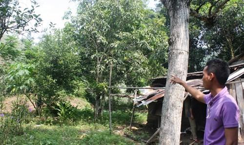 Khu vực thôn Hoa dự kiến sẽ đặt nhà máy thép. Ảnh: Nguyễn Thành.