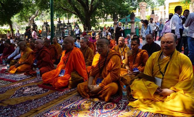 Các nhà sư Việt Nam và nước ngoài thiền tọa dưới gốc cây bồ đề cổ ở Bodh Gaya. Ảnh: Lan Anh.