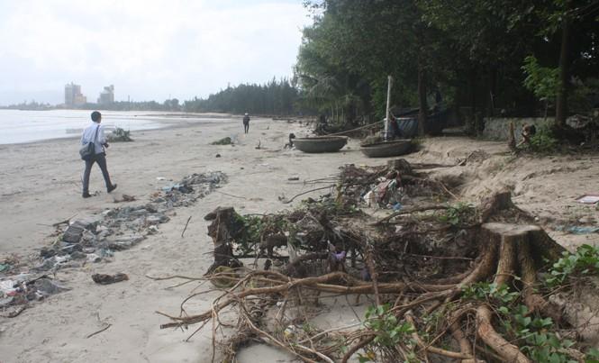 Đoạn bờ biển xung yếu tại tổ 4, tổ 5 (Hòa Hiệp Bắc) được cho nằm ngoài dự án kè biển Liên Chiểu.
