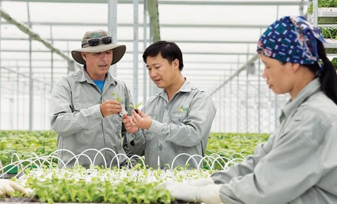 Mô hình nông nghiệp công nghệ cao của tập đoàn VinGroup. Ảnh: Bình Phương.