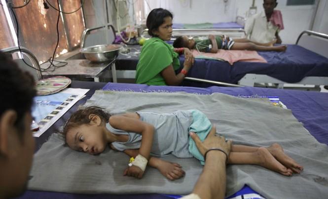 Nhiều đứa trẻ ở Muzaffarpur, Ấn Độ phải nhập viện sau khi ăn vải xanh trong lúc đói bụng.