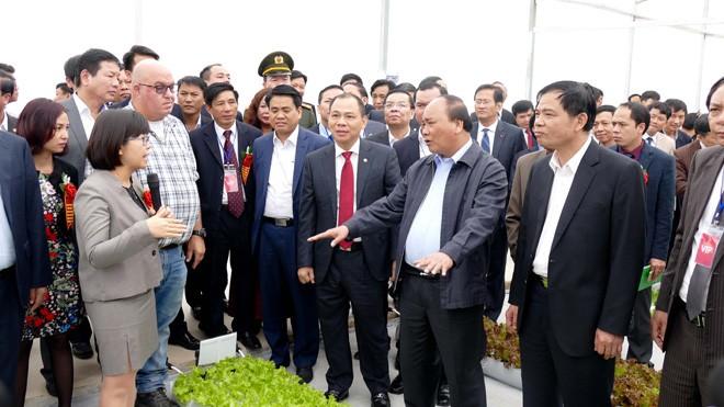 Thủ tướng Nguyễn Xuân Phúc và đại diện các đơn vị tham quan mô hình sản xuất nông nghiệp công nghệ cao tại huyện Lý Nhân, tỉnh Hà Nam.