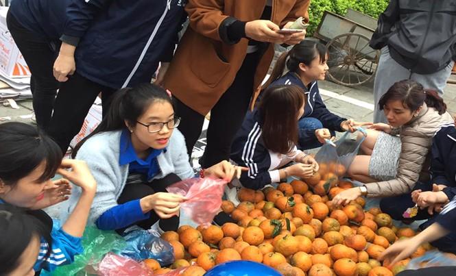 Tình nguyện viên trẻ bán cam trong chương trình giải cứu cam cho người dân huyện Quang Bình, Hà Giang. Ảnh: NVCC.