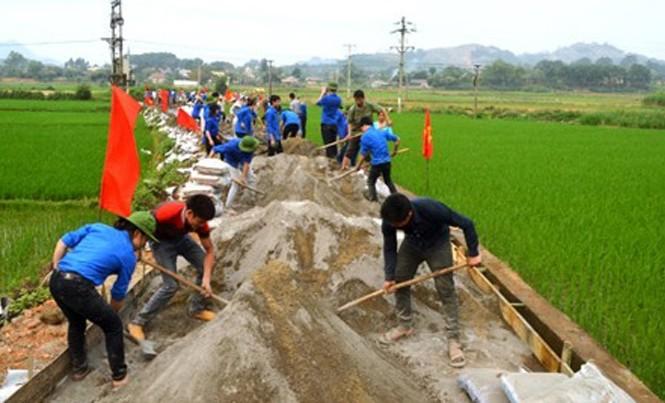 Chiến dịch Thanh niên tình nguyện hè 2017: Chung tay xây dựng nông thôn mới